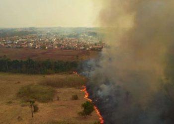 Mato Gosso MT 13 09 2020-Incêndio no Pantanal A Delegacia de Meio Ambiente (Dema) apura quem são os possíveis responsáveis pelos focos de incêndio, que deram início a grandes queimadas no Pantanal. As cinco perícias realizadas pelo Centro Integrado Multiagências de Coordenação Operacional (Ciman-MT) apontaram ação humana como causa da origem das queimadas na região foto Mayke Toscano/Secom-MT